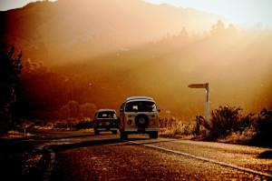Bulli_Love-6-zwei-Wagen-tiefe-Sonne