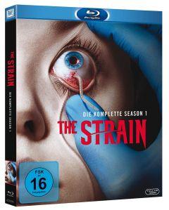 Strain-BD-Cover