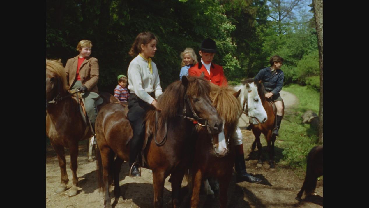 Ponyhotel Immenhof