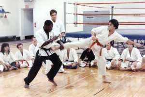 Karate_Tiger-06
