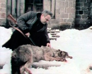 wolfsziegel-4