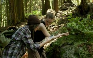 into_the_forest-10